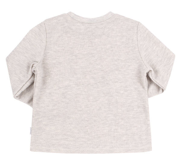 Bluza dzianinowa z długim rękawem i nadrukiem dla chłopca szara
